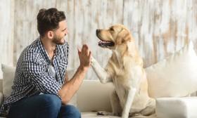 Вештачката интелигенција ќе ни овозможи да зборуваме со животни?